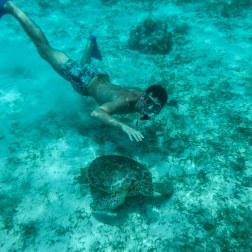Tortuga Pal | Caye Caulker, Belize