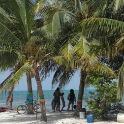 Island Life | Caye Caulker, Belize