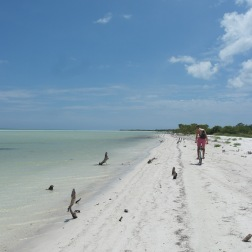 In Search of Flamingos | Holbox, Mexico