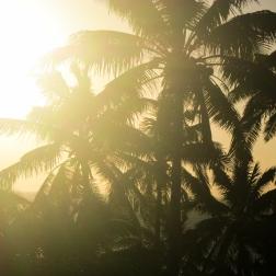 Golden Hour   Mantaray Island, Fiji