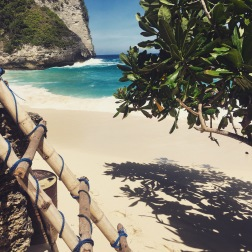 Kelingking Beach Ladder, Nusa Penida