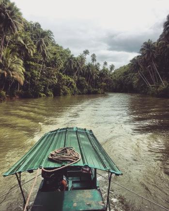 Bohol | Cruising the Loboc River