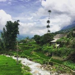 Teh Vanh Village | Sapa