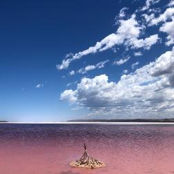 Pink Lake II | Port Gregory, WA