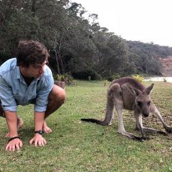 'Roo Mates | Pebbly Beach, NSW