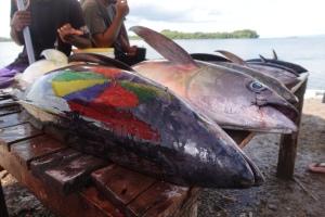 Catch of the Day, Gizo, Solomon Islands