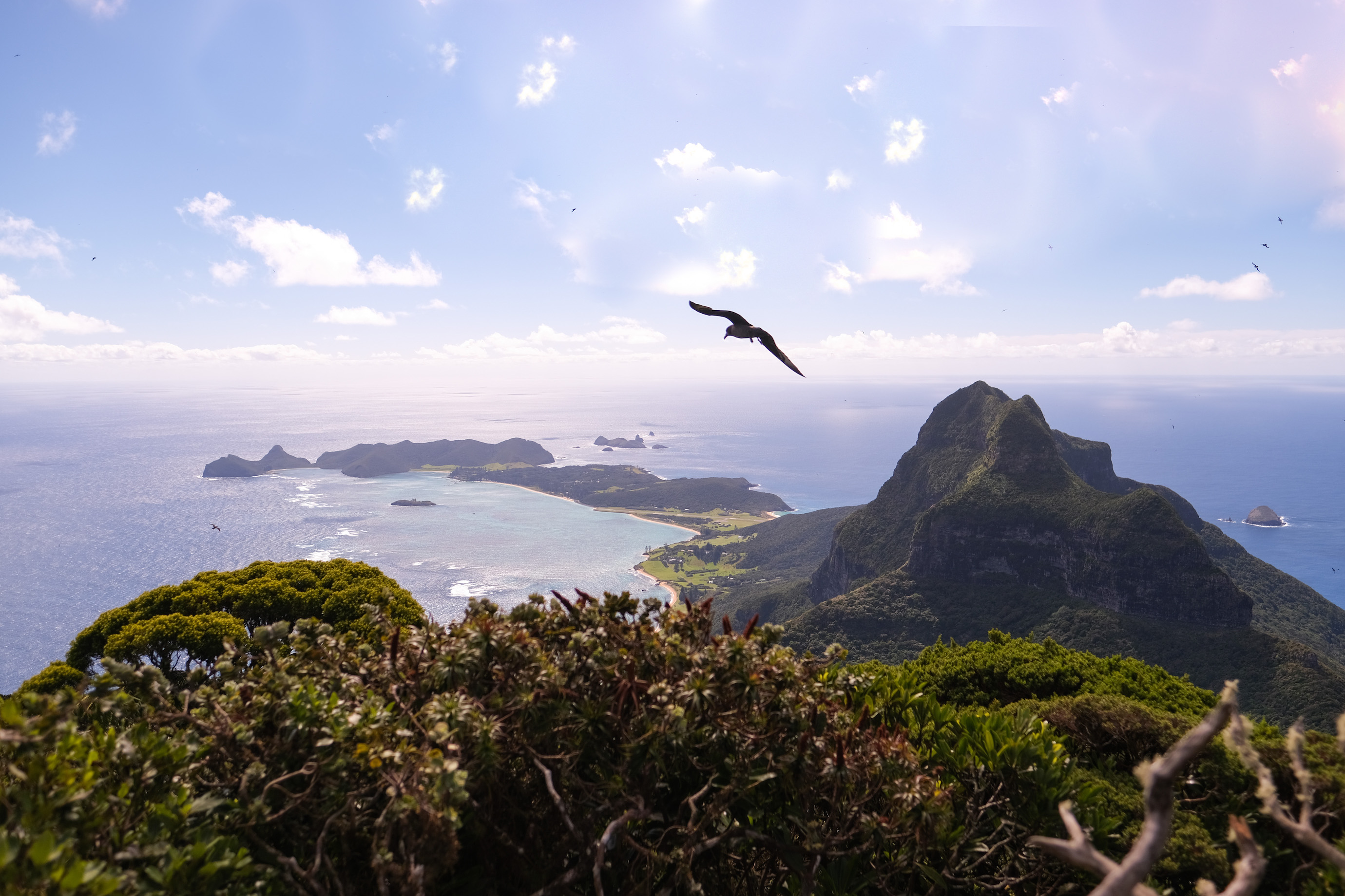 Looking back across the island from the summit of Mt. Gower