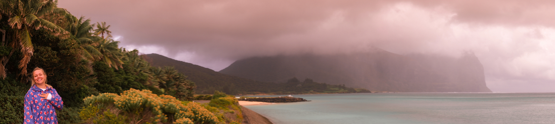 Lord Howe Rainy Pano